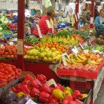 URBACT: Urban Markets - excursion Turin